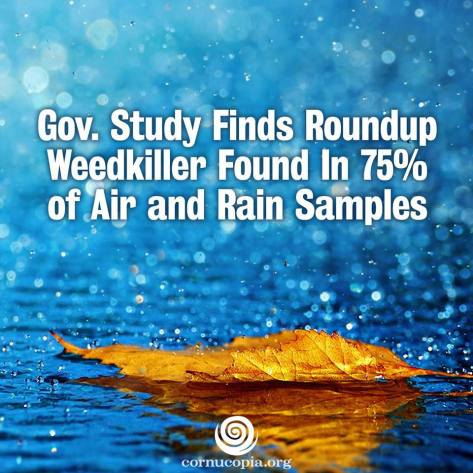Chemical Weed Killers Found in our Water & Soil :(